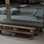 You Need A 55 Gallon Aquarium Stand – Read On!